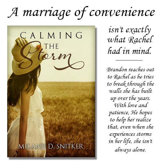Calming the Storm by Melanie D. Snitker - the new cover image is live!