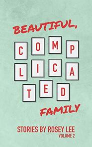 Beautiful, Complicated Family: Volume 2 by Rosey Lee