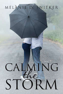 FREE Book - Calming the Storm