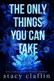 The Only Things You Can Take by Stacy Claflin