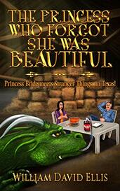 The Princess Who Forgot She Was Beautiful by William David Ellis